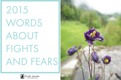 2015 words about fights and fears